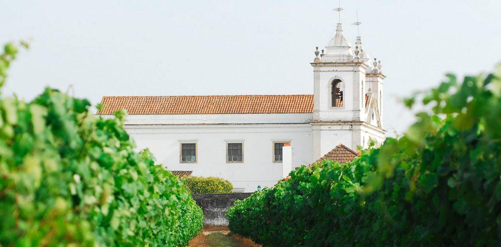 Weingut Casa Cadaval